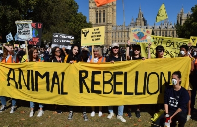 How will Extinction Rebellion cope with the new kid on the block? hero image